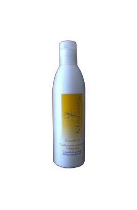 SHAMPOO ANTIFORFORA RINFRESCANTE 250ml